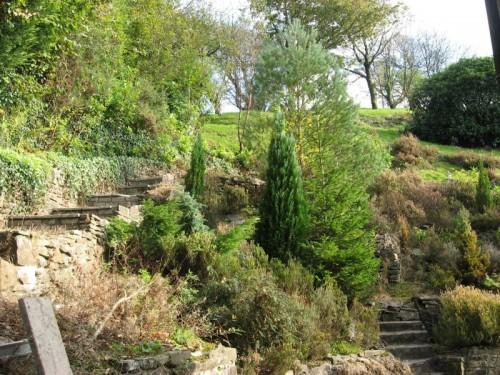 The Gardens 4